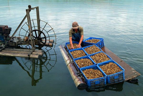 顺昌县通过短信平台 为渔业生产提供降温提醒